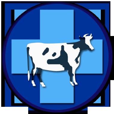 Ветеринария крупного рогатого скота