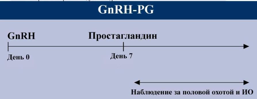 ������������� GnRg pg