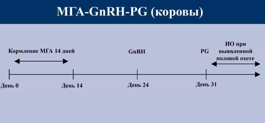 ���-GnRH-PG