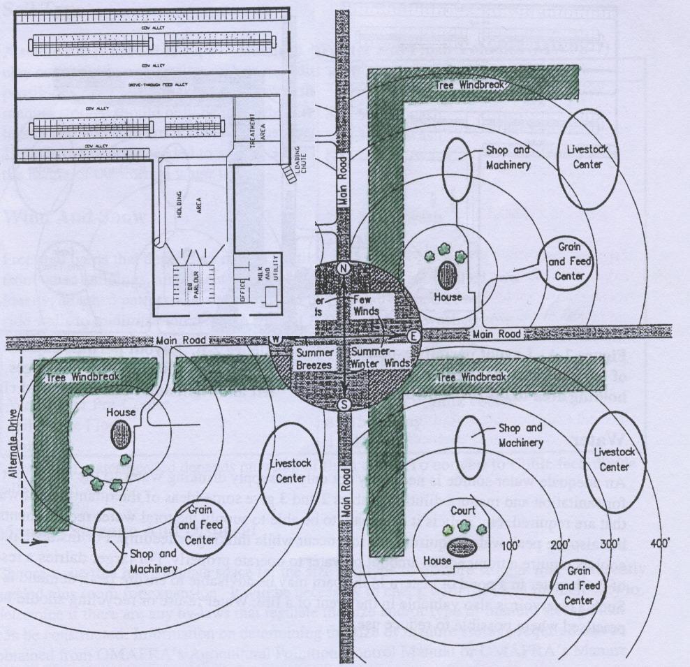 схема эскиз молочно товарная ферма на 200 голов